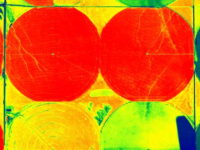 chlorophyll content, water & fertilizer management, disease identification, phenotyping - aerialthermalimaging.com